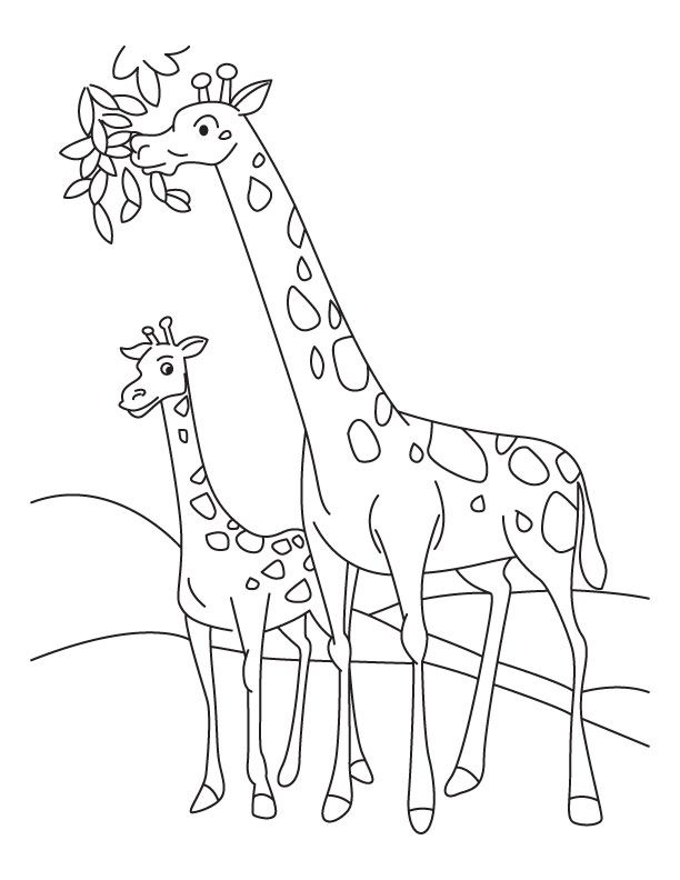 giraffe coloring pages printable - photo#13