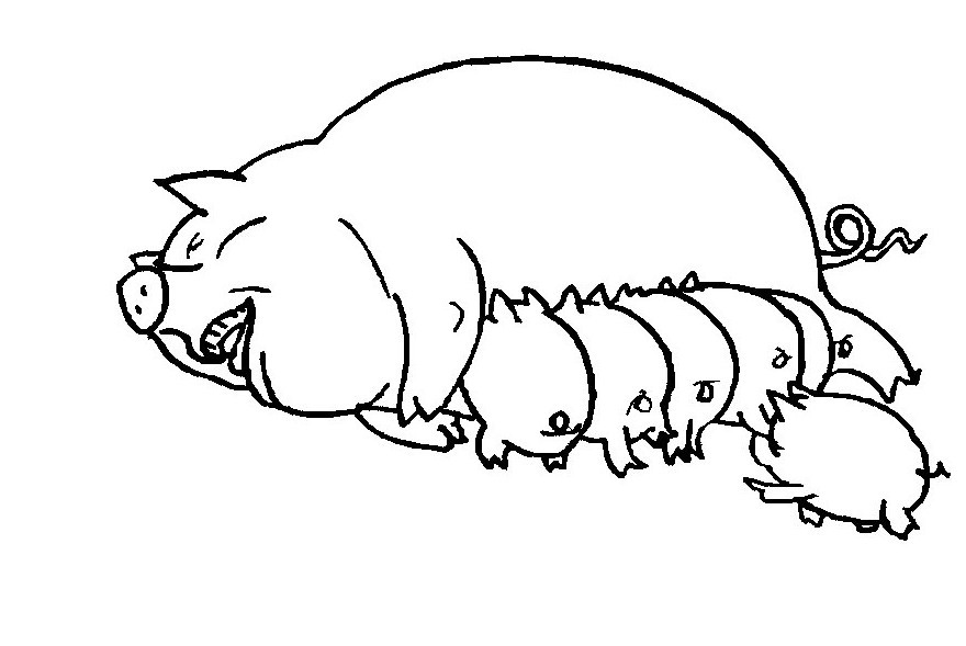 Guinea Pigs Outline Coloring Pages Guinea Pigs Outline Colouring Pages