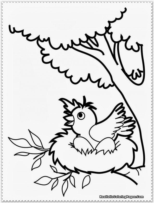 ocelot coloring page sheet printable coloring sheet 99coloring com