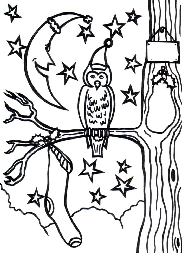 Christmas Owl Coloring Page - Christmas Coloring Pages : Coloring