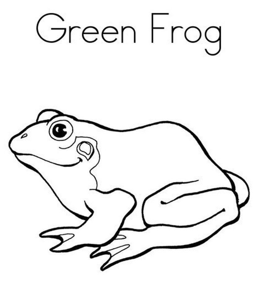 Coloring Page Frog Coloring Home