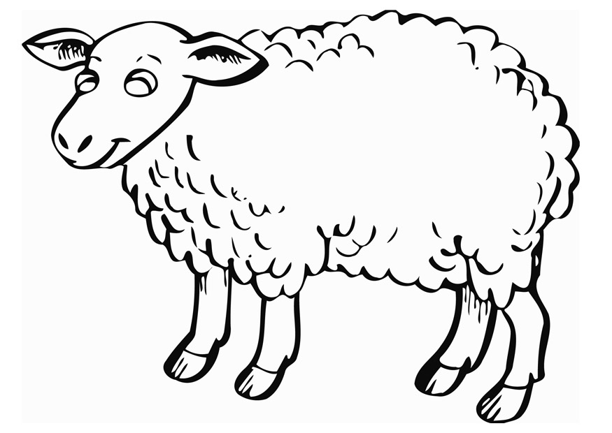 image regarding Sheep Template Printable named Sheep Template Printable - Coloring Residence