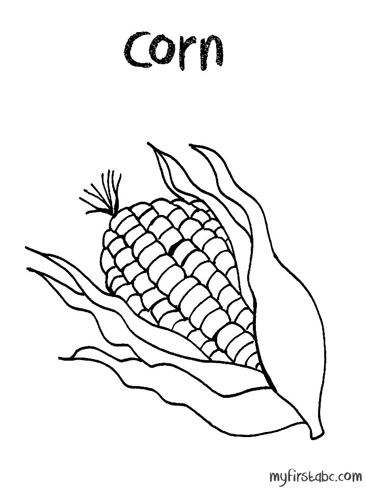 corn cob coloring page coloring home