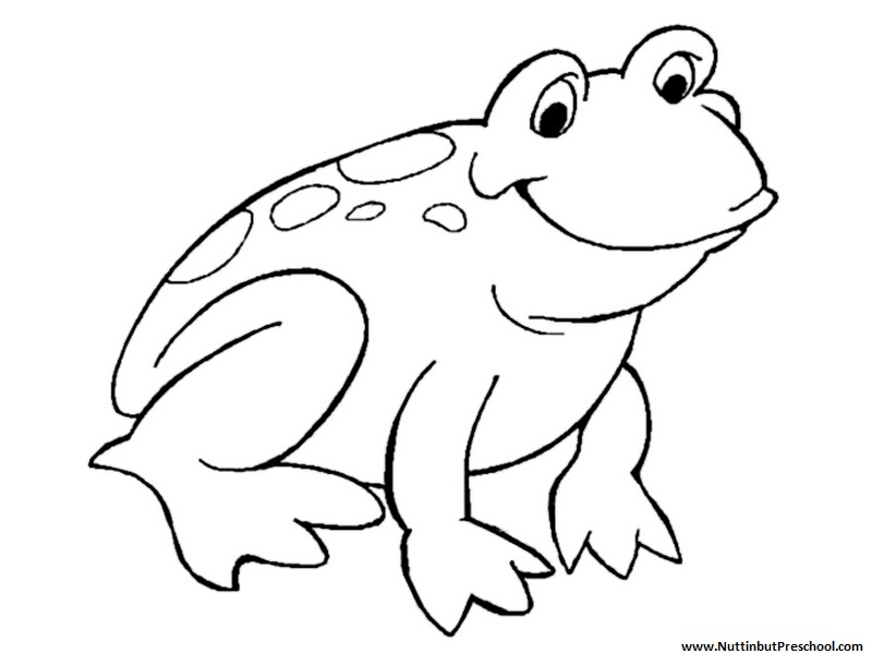 cartoon frog coloring pages - photo#7