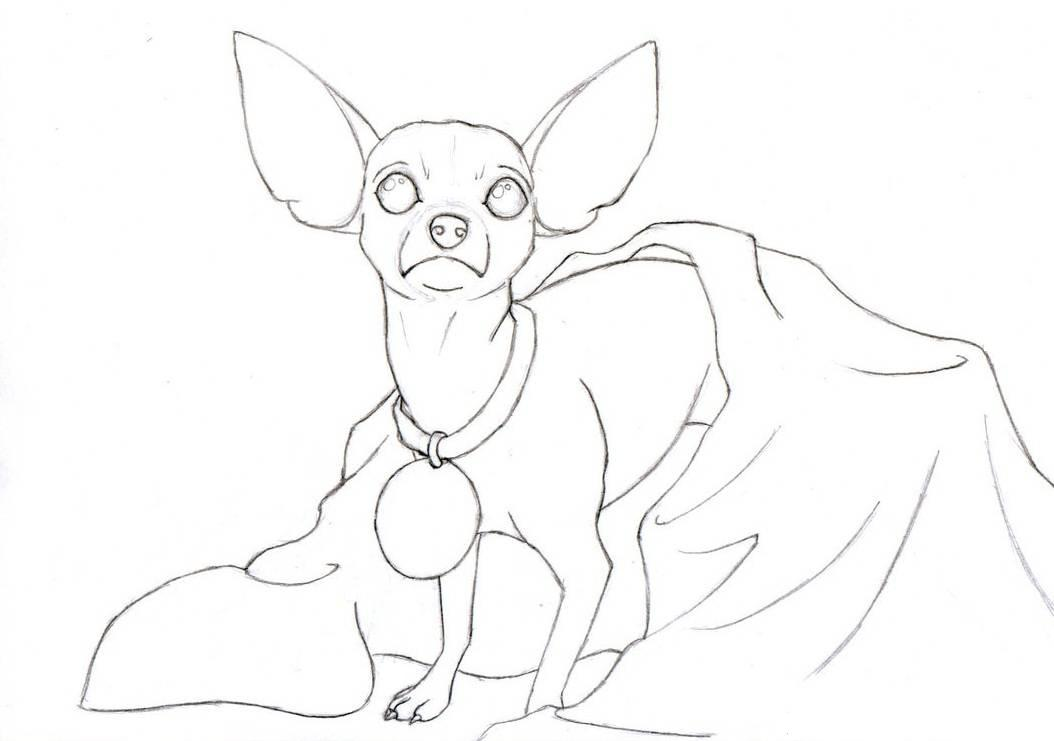 Chihuahua Coloring Pages Coloring Home