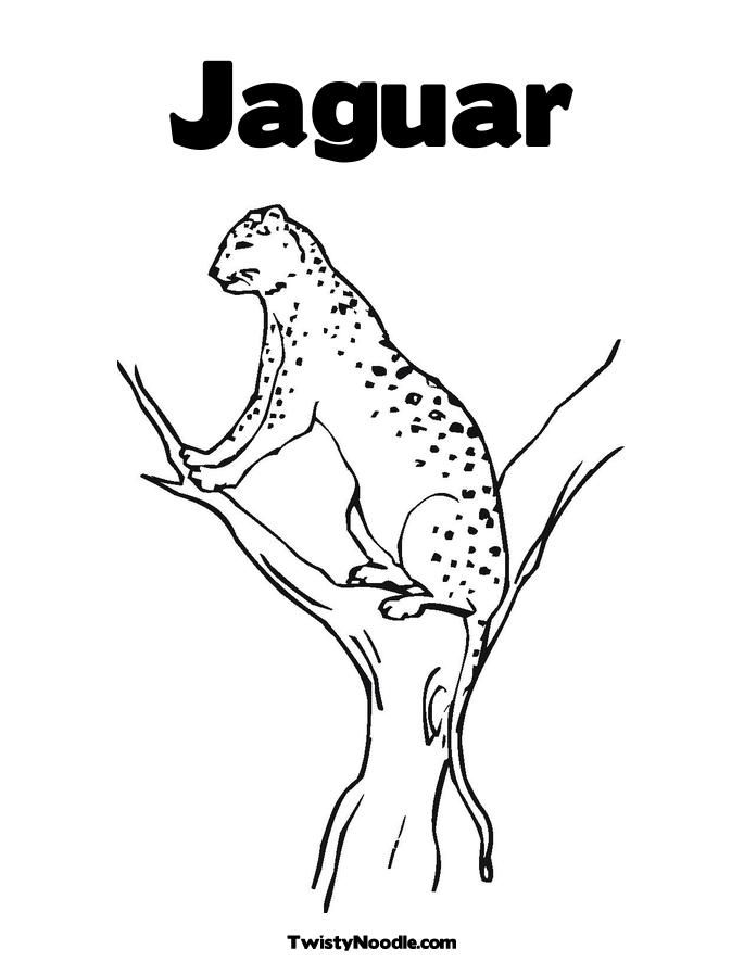 Jaguar Car Coloring Pages : Jaguar coloring pages home