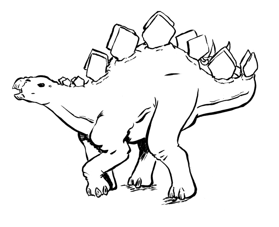 Stegosaurus Coloring Page Coloring Home Stegosaurus Coloring Pages