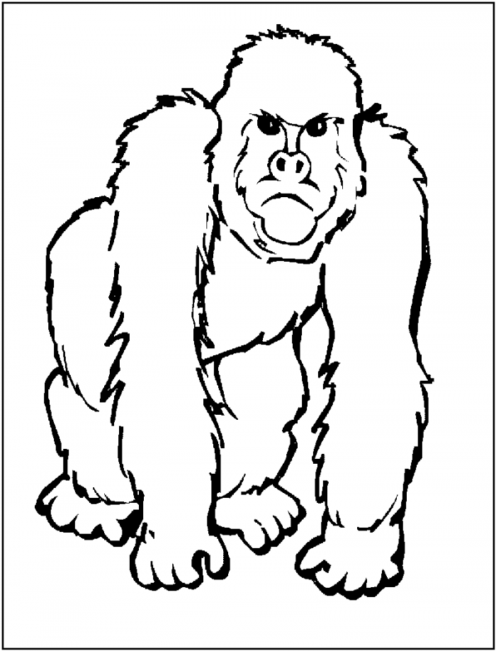 Gorilla Coloring Pages Printable | 99coloring.com