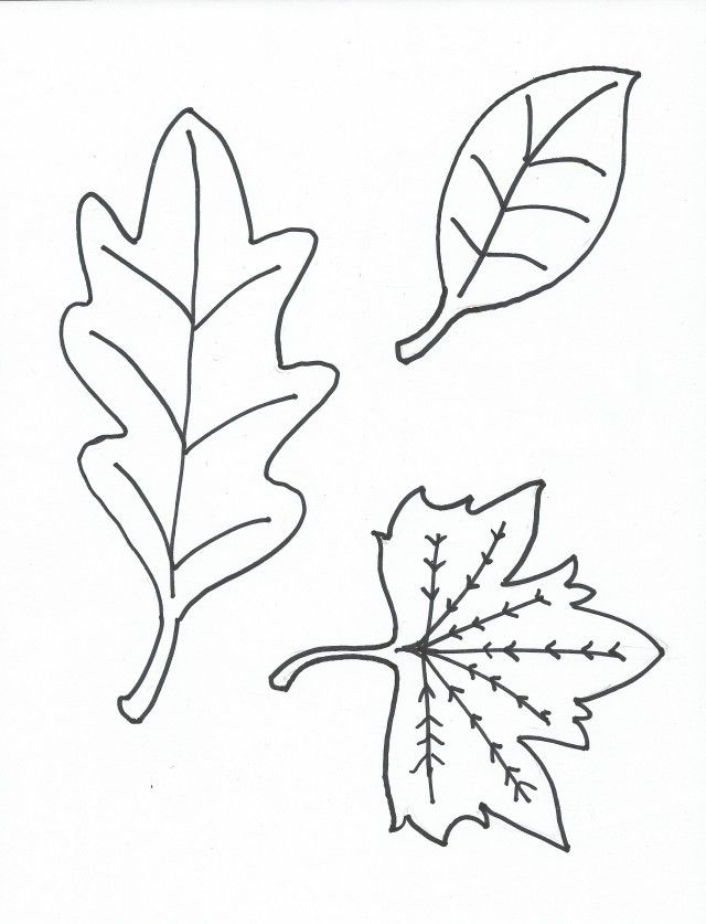 Oak Leaf Stencil Printable Coloring Home