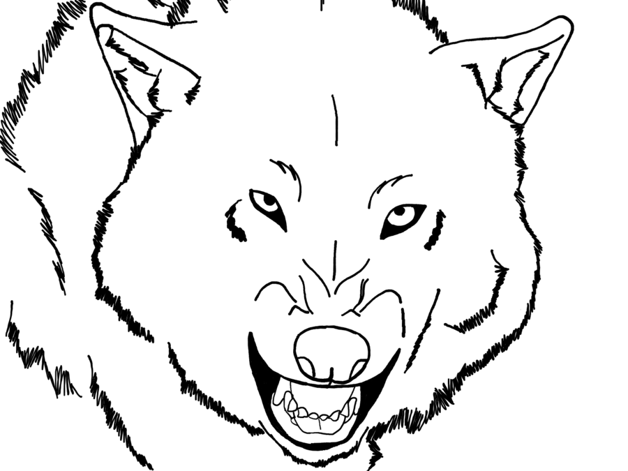 Wolf face coloring - photo#9