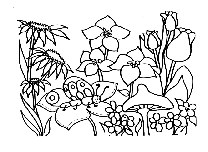 printable coloring pages for sping - photo#9