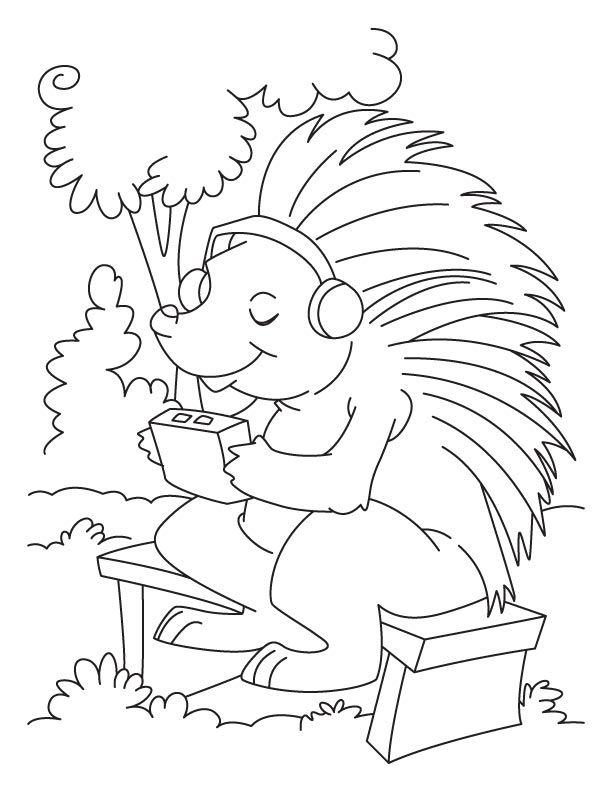 Porcupine coloring pages coloring home for Porcupine coloring page