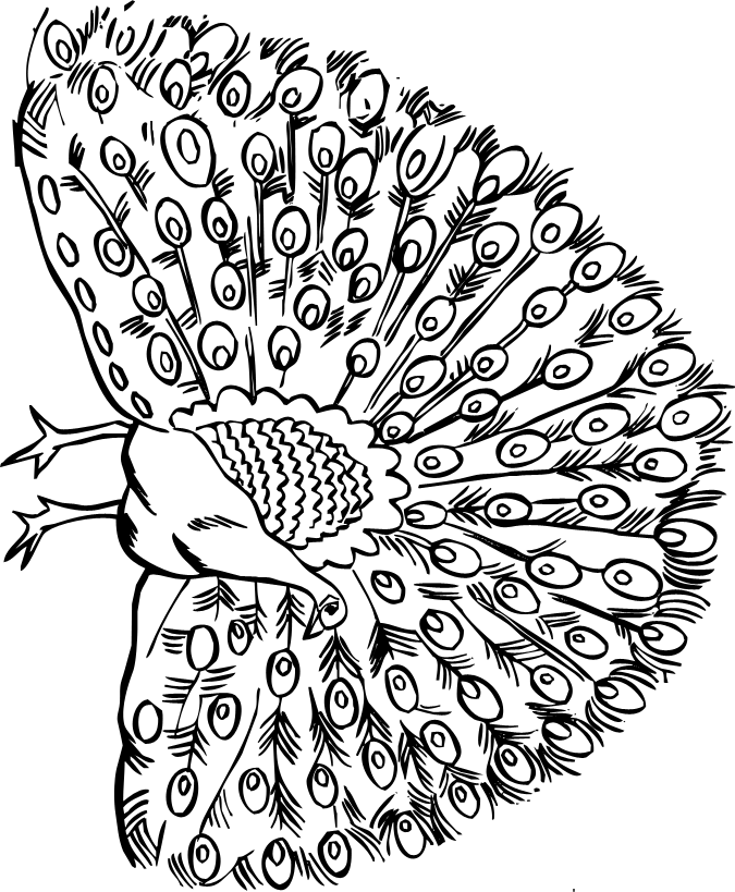 coloring pages of helen keller - photo#36