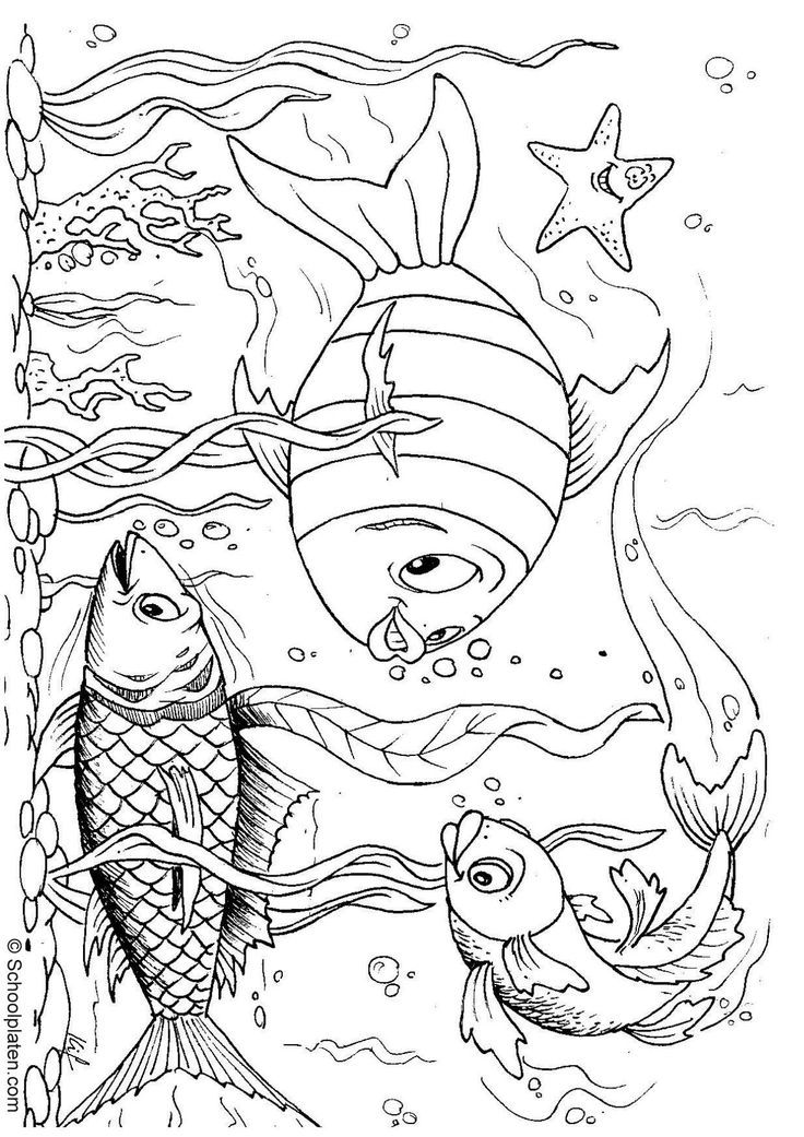 Ocean fish coloring pages az coloring pages for Free coloring fish pages