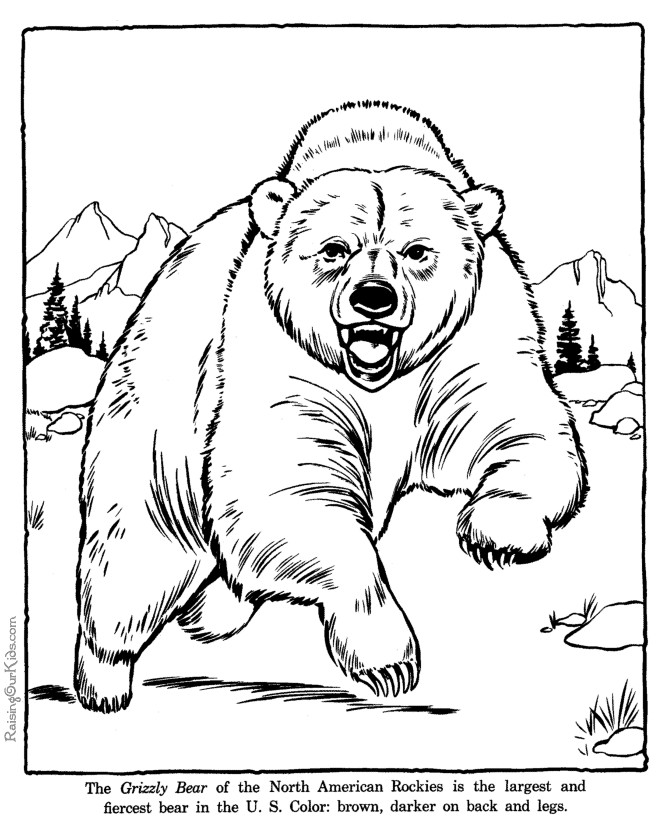 Bear Coloring PagesColoring Pages | Coloring Pages