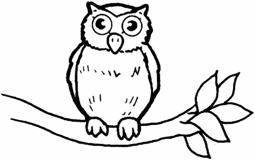 unique coloring pages owl ornate - photo#23