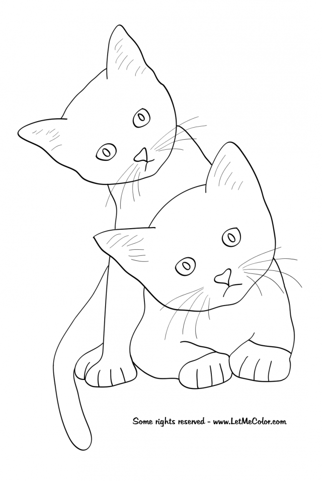 Realistic Cat Coloring Pages Coloring Home