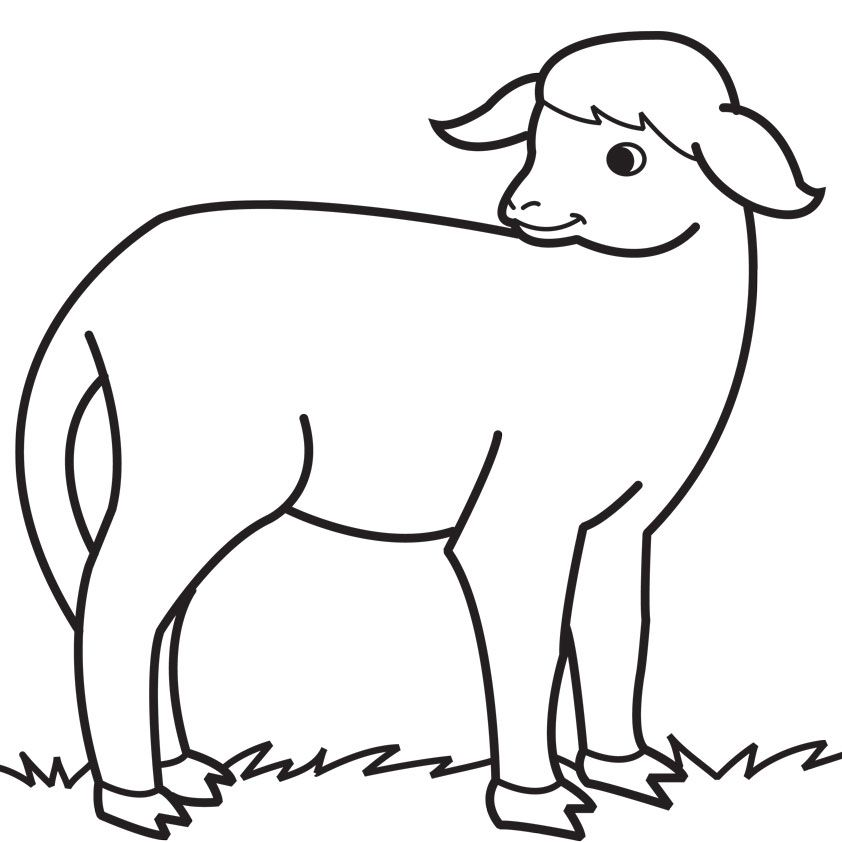 farm animals Sheep Coloring Pages For Kids | Great Coloring Pages