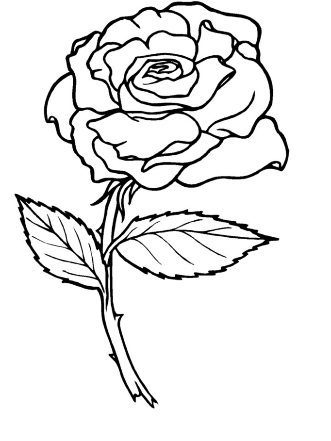 Rose coloring pages for kids coloring home - Rose coloriage ...