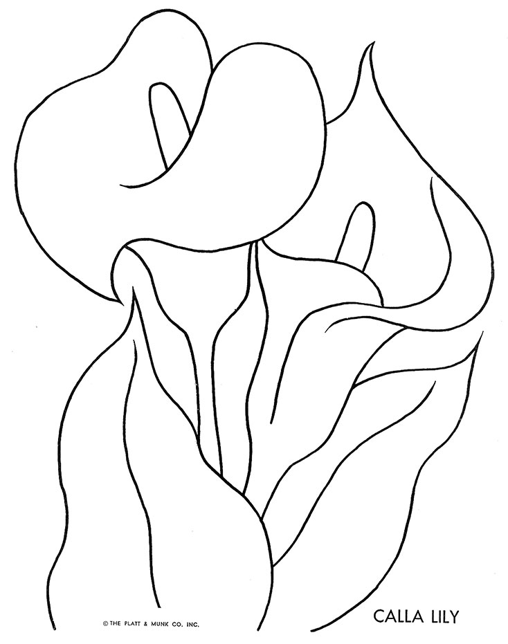 free lily flower coloring pages Filigree Coloring Book  Beth Lily Coloring Book
