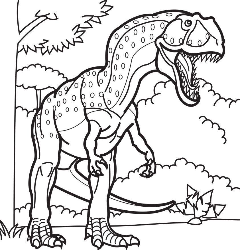 Iguana Coloring Sheet