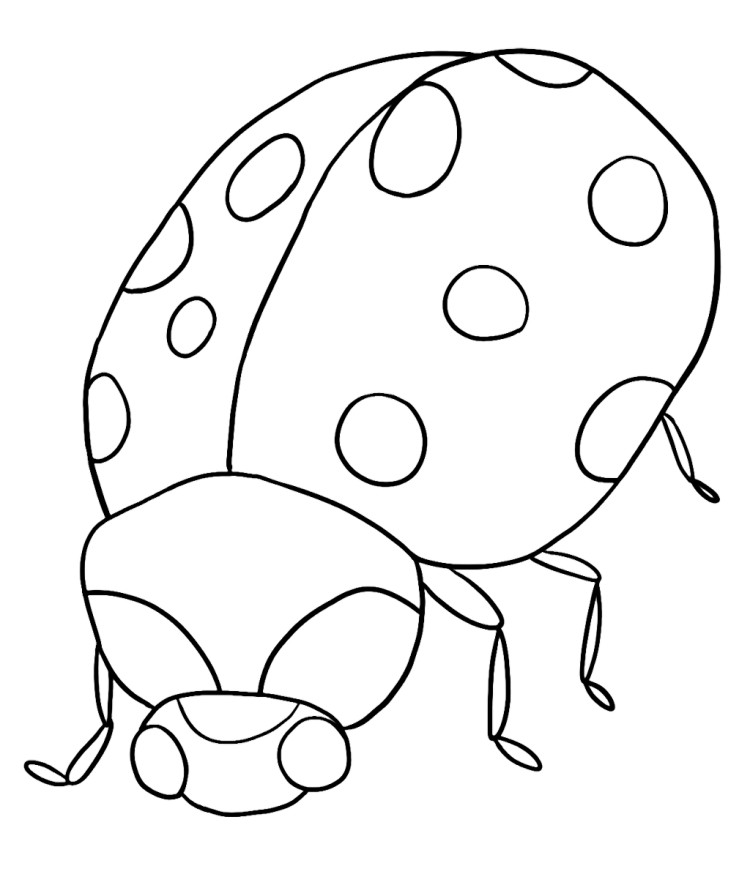 Free Coloring Pages Of Cute Lady Bug