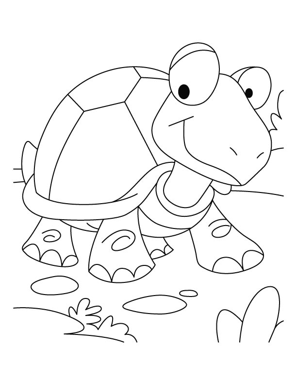 Tortoise coloring page az coloring pages for Tortoise and the hare coloring page