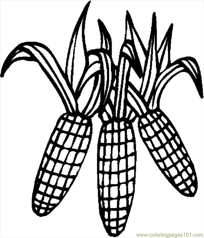 Coloring Pages Corn 4 (Holidays > Thanksgiving Day) - free