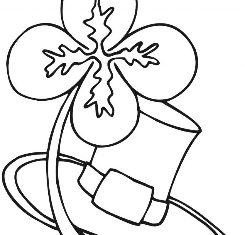 Four Leaf Clover And Leaves Coloring Pages - Kids Colouring Pages
