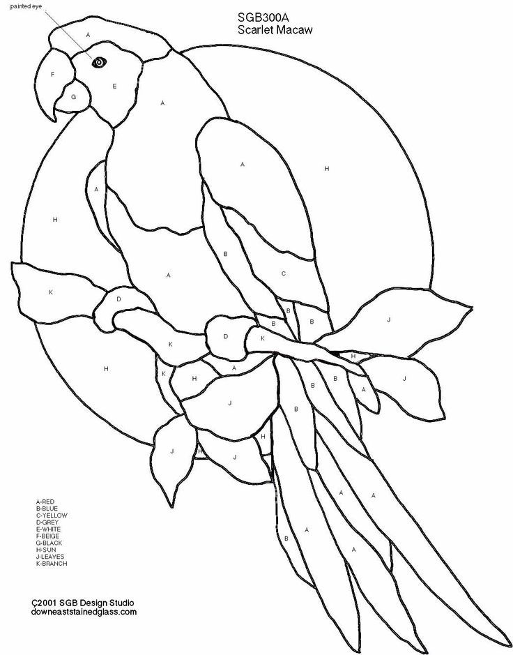 Macaw Coloring Page  Coloring Home