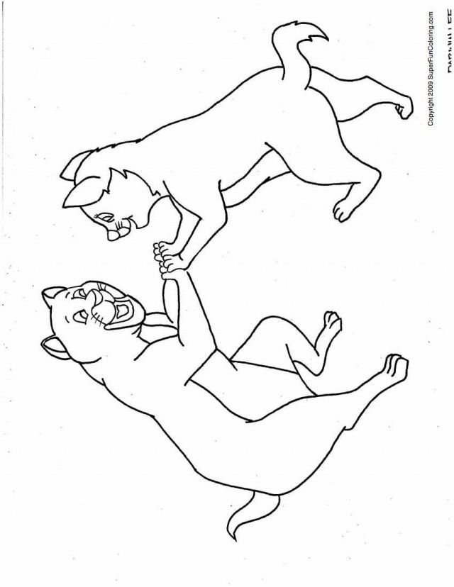Warrior cats free coloring pages for Warrior cats coloring pages