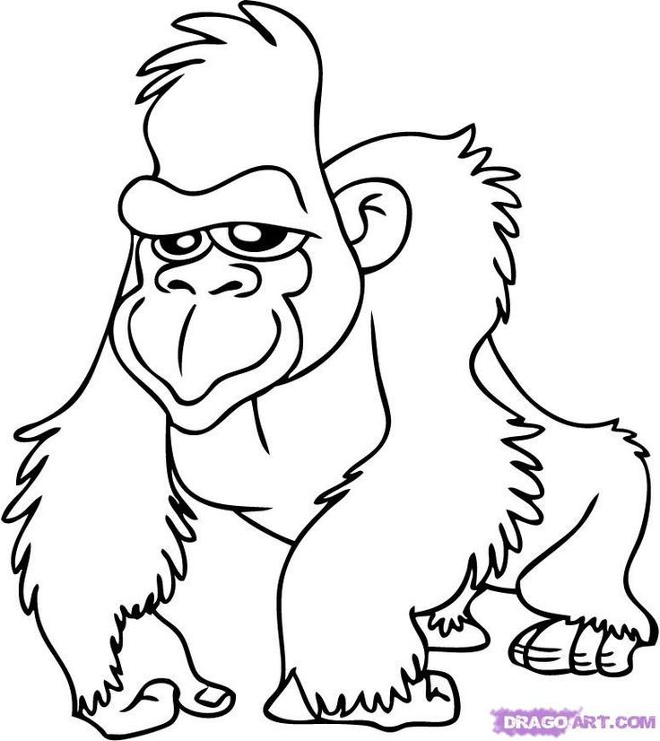 Safari Color Pages Coloring Home Safari Coloring Pages