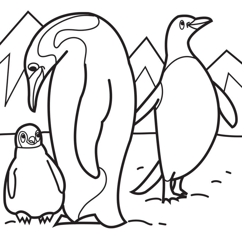 Penguins Pictures to Colour Penguin Family Colouring Pages