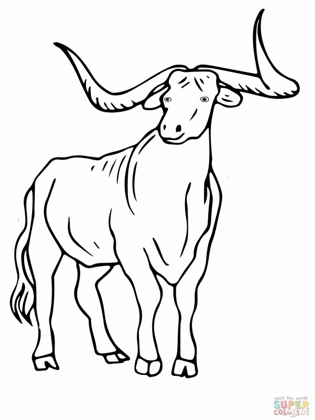 Texas Longhorns Color Texas Coloring Page 101899