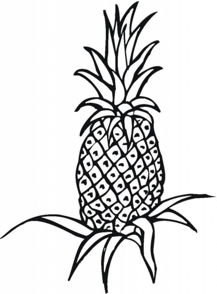Pineapple Coloring Page AZ Coloring