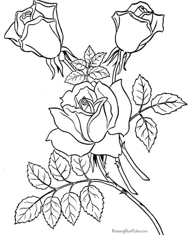 Fun Coloring Pages For Adults Coloring Home Coloring Sheets Printable For Adults