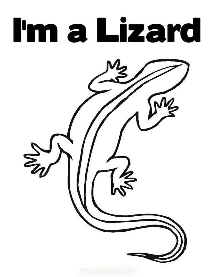 Reptile Coloring Page  Coloring Home