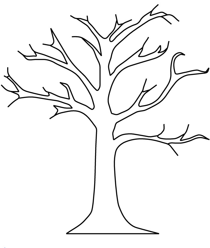Tree Branches Printable Coloring Pages Blank Tree Coloring Page