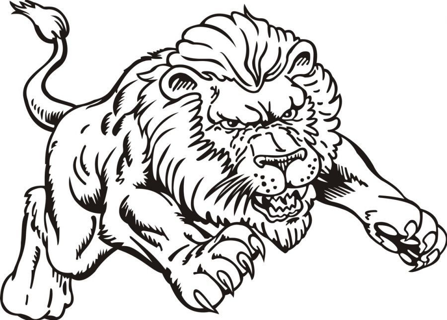 Lion Coloring Sheet  Coloring Home