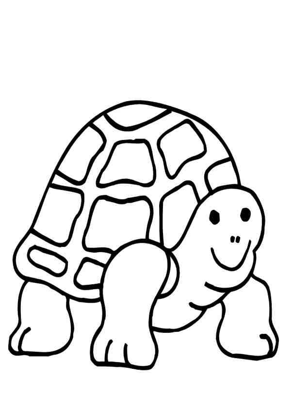 Coloring Pages Of Turtles AZ