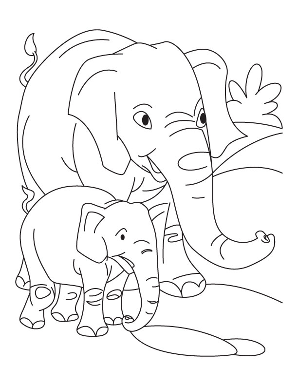 baby elephant coloring pages print - photo#45