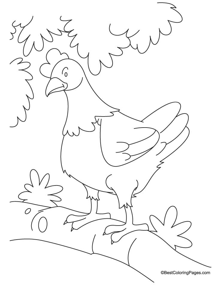 Hen waiting for den coloring pages | Download Free Hen waiting for