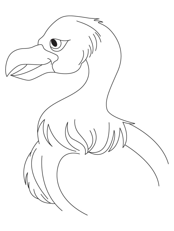 jatayu Colouring Pages