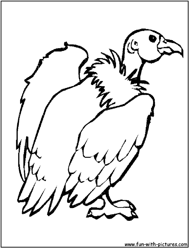 Vulture Coloring Pages Coloring Home Vulture Coloring Page
