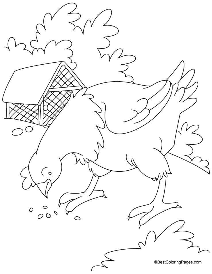 Give grain-egg gain hen coloring pages | Download Free Give grain