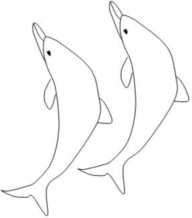 Dolphin Images Cartoon - Coloring Home