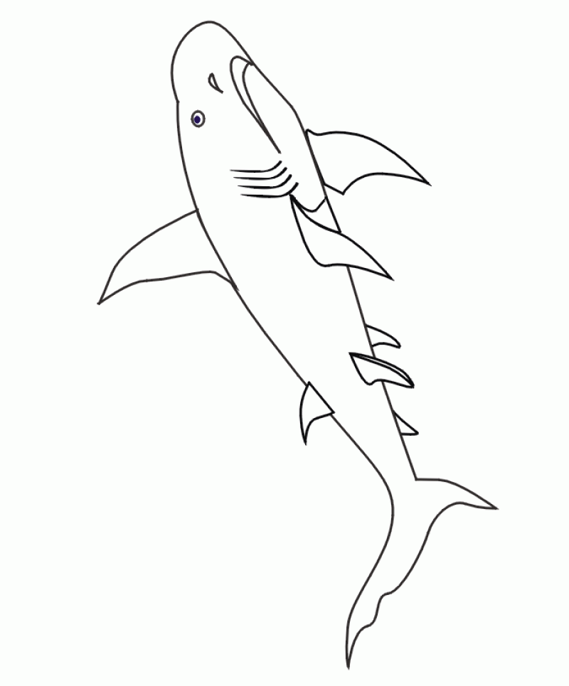 Whale Shark Coloring Pages Coloring Home