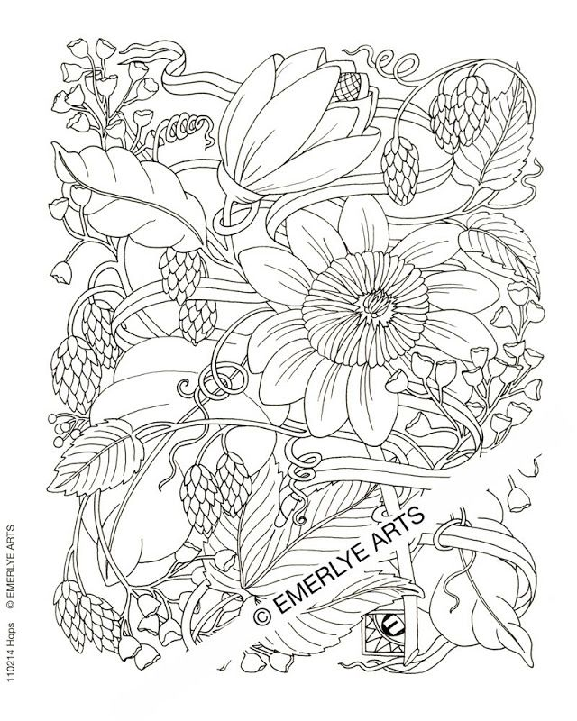 Free Coloring Pages For Adults Printable Hard To Color - Coloring Home