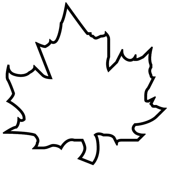 Maple Leaf vs Oak Leaf Maple Leaf Template