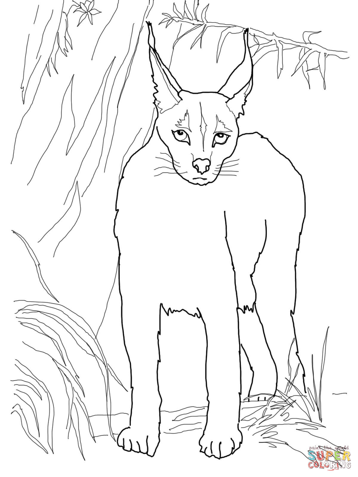 Desert Lynx Caracal coloring page | Free Printable Coloring Pages